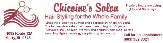 Chicoine's Salon